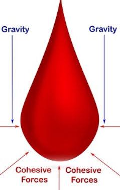 Dripping Blood.jpg