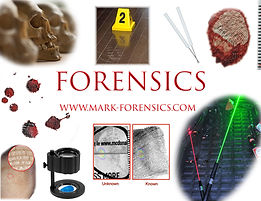 Forensics Cover Image copy.jpg