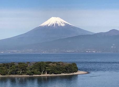 Osezaki: A Wonder in the Izu Peninsula