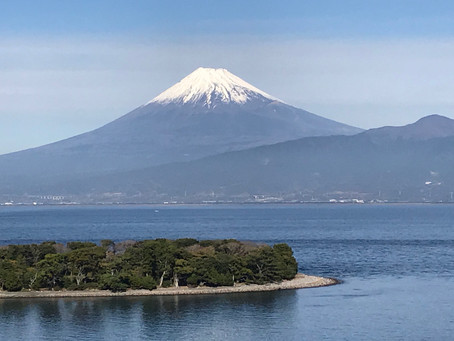 Osezaki: A Wonder in the Izu Peninsula