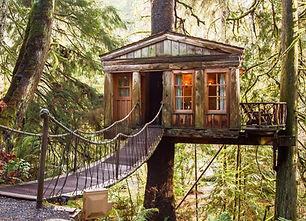 treehousepoint.JPG