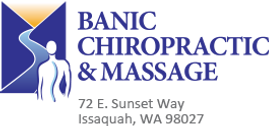 Banic Chiropractic-logo.png