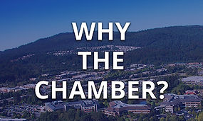Why the Chamber.jpg