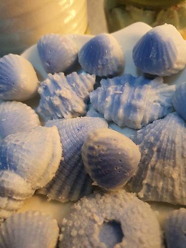 sea spray shells small 1.jpg