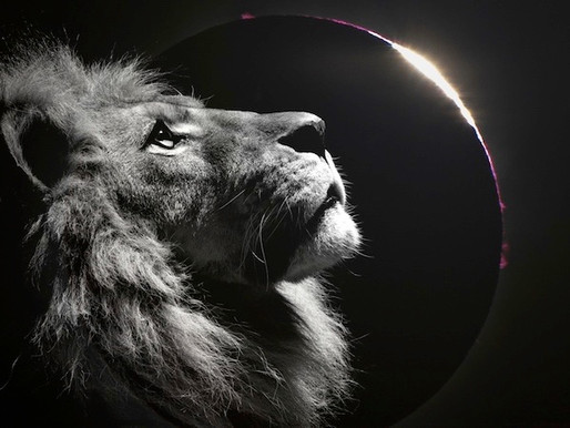 Super Blood Blue Full Moon Lunar Eclipse in Leo, January 31st, 2018 #guestblog