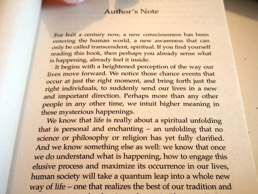 nice little read here #book #review Celestine Prophecy