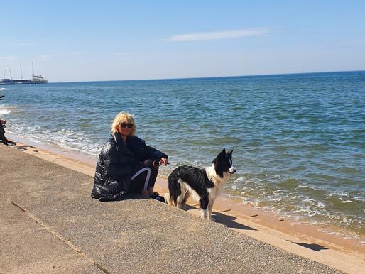 A walk with my bestie Josie Langenberg (and cheeky Missy Benson Hound)