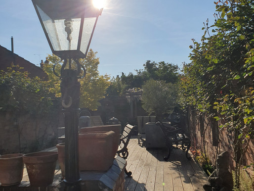 eldest son's garden – very beautiful – proud Mum