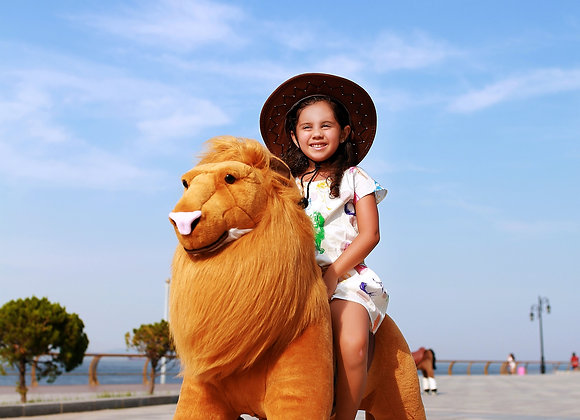 Ride on Animal-Lion (medium)