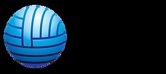 CPI Logo_300_3x1.png