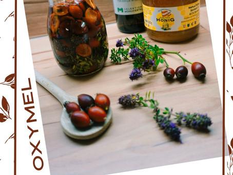 Hagebutten Quendel Oxymel- ein Immunbooster
