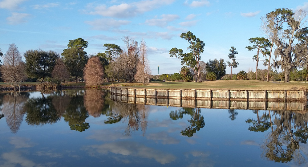 Rogers Park Golf Course Tampa FL