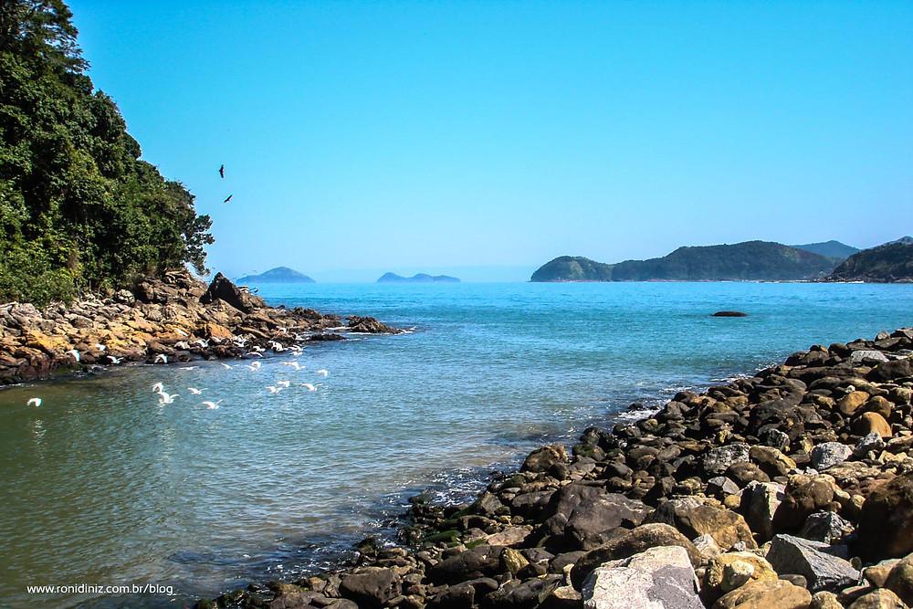 Encontro do Rio com o Mar (01/2008)