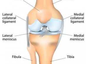 """Meniscus Injury: My """"Locking"""" Knee."""