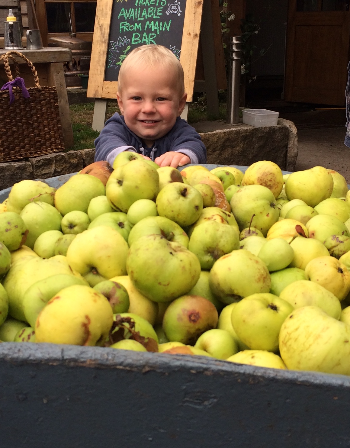 toddler & apples