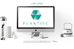 Plantive Logo