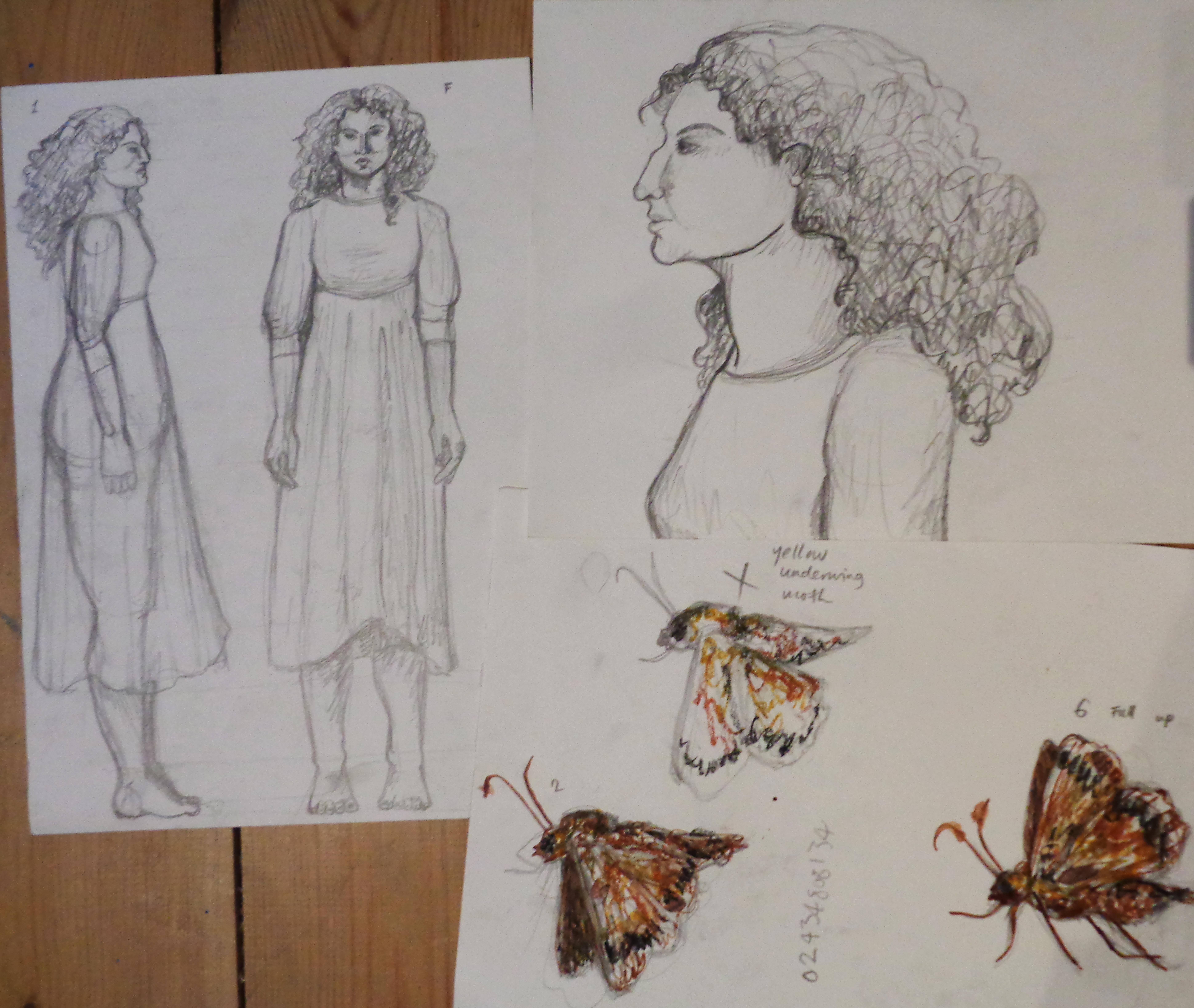 In An Artist's Studio