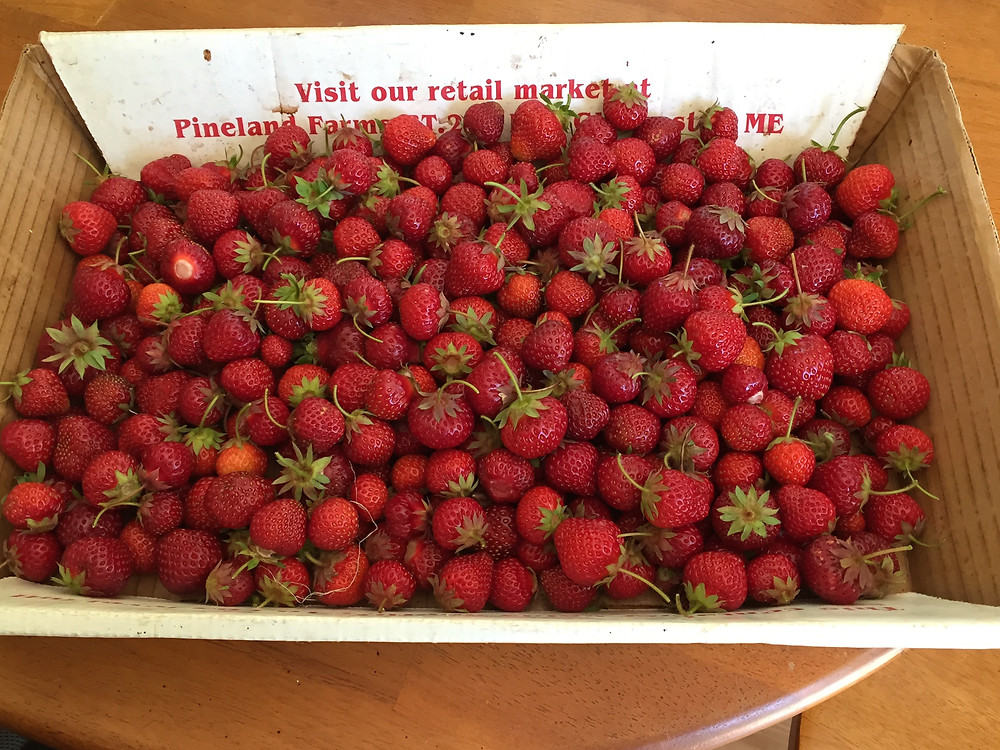 7-3-15 strawberries - 1.jpg