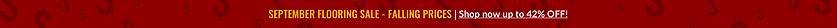 Strip Website Promo.png