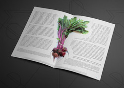 Food Systems and Nutrition