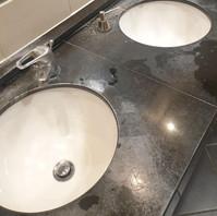 Bathroom Pre-Clean