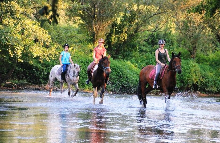 Paardrijden door de natuur