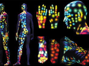 Human Body Maps