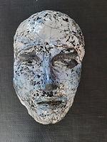 fvdg masker 2.jpg
