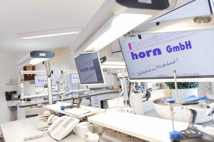 Horn-0654.jpg