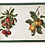Thumbnail: Serving Tray With Drawings of Fruit