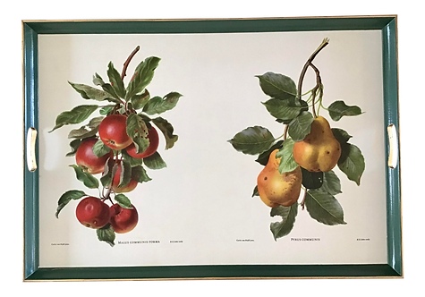 Serving Tray With Drawings of Fruit
