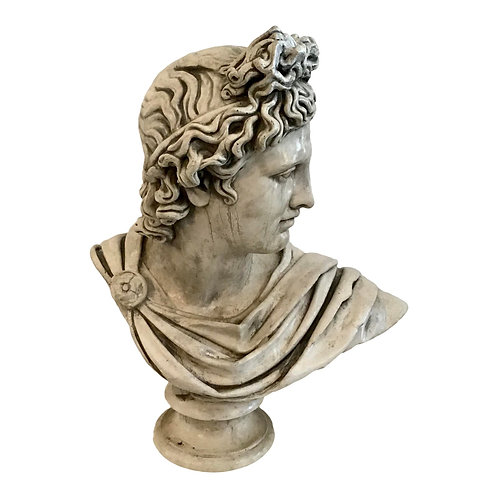 Belvedere Marble Bust
