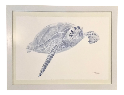 Original Blue Watercolor of a Sea Turtle Right