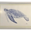 Thumbnail: Hand Painted Watercolor of a Sea Turtle Left