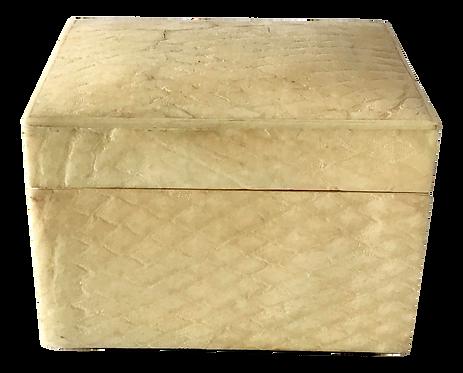 1960s Snake Skin Covered Box