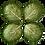 Thumbnail: Ceramic Green Lettuce Leaf Shape Dish - Set of 4