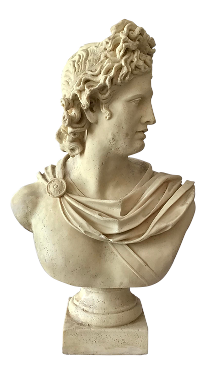 Bust of Belvedere Sculpture
