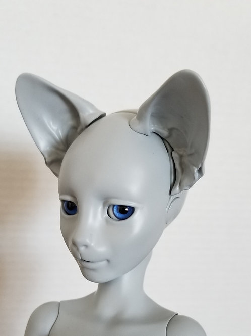 Felix head Pre-order - full Payment option