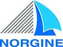 2016-NORGINE - Global- Norgine logo.jpg