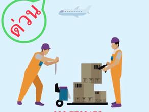 รับสมัครพนักงาน Porter ประจำ บริษัท การบินไทย จำกัด (มหาชน)