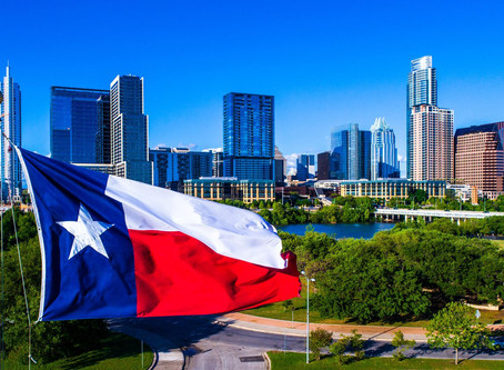 THE ROLE OF THE TEXAS CYBERSECURITY COUNCIL