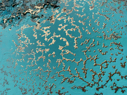 Ocean Artist -  Petra Meikle de Vlas8.png