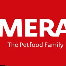 MERA17_Logo_Dach_04.png