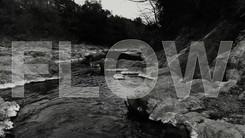 """GAGLE """"FLOW"""""""