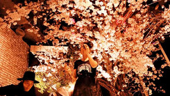 RETHINK TOKYO Vol.8 -OHANAMI INSTALLATION-