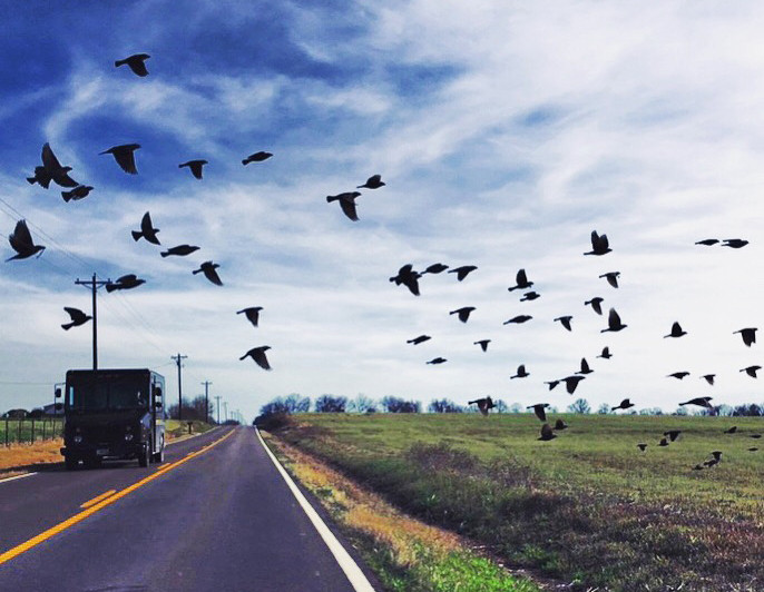 On the road, Tennessee, USA, 209