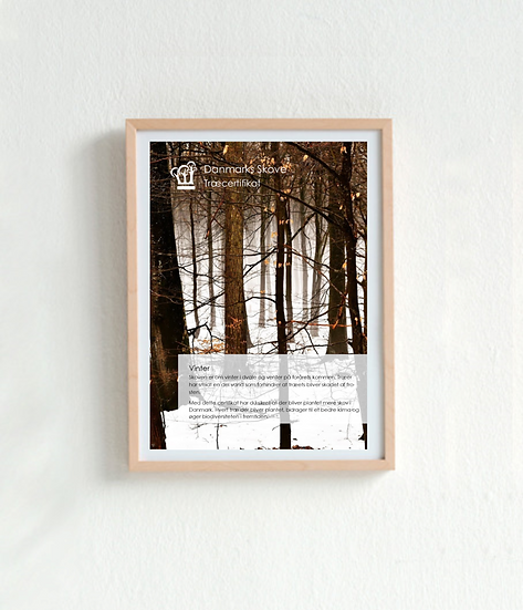 Træcertifikat - Vinter