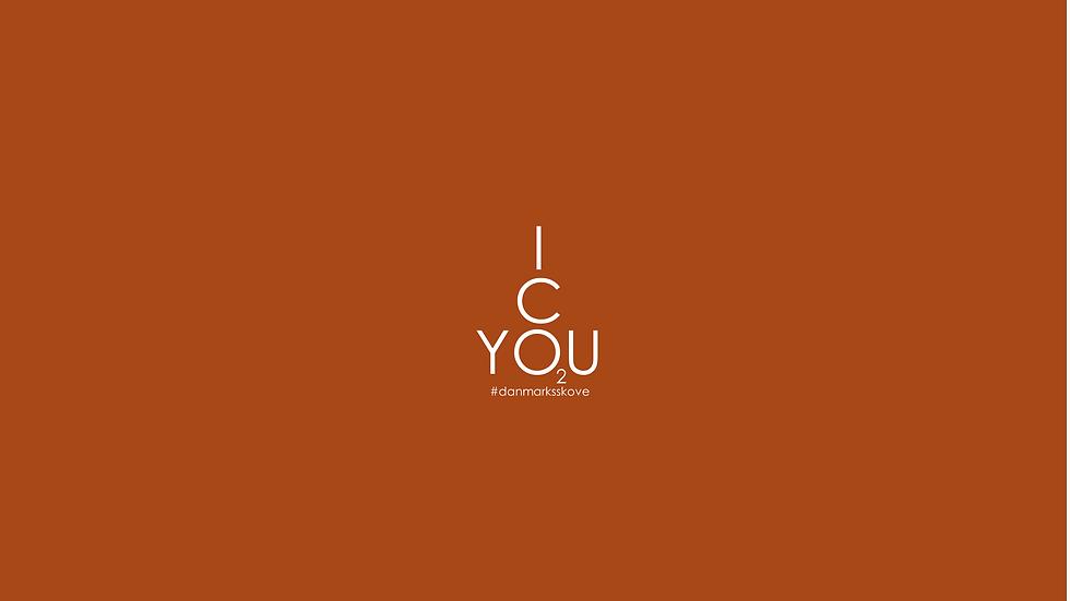 Plakat - Icyou2
