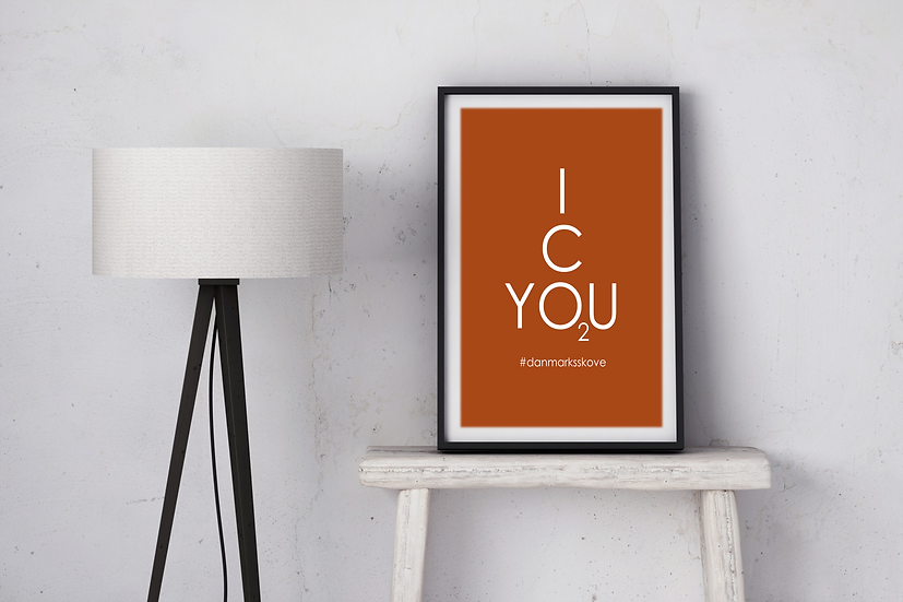 Plakat - Icyou2 STOR