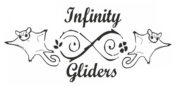 Infinity Gliders Logo